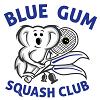 BGSC-logo-small.png